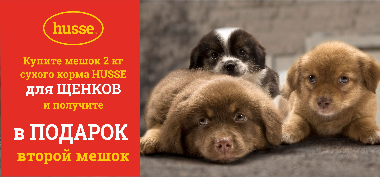 Акции на товары для кошек и собак